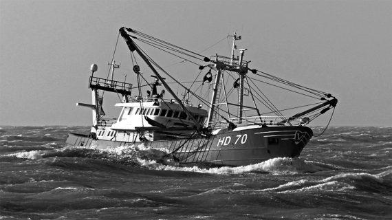 Van der Lee Seafish acquista un proprio peschereccio